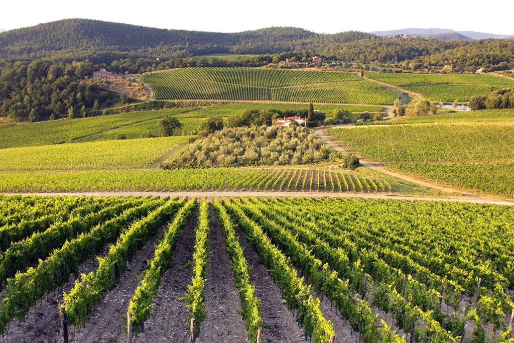 beautiful-tuscan-view