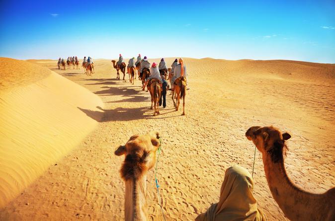 desert-experience-camel-safari-with-dinner-and-emirati-activities-in-dubai-154755