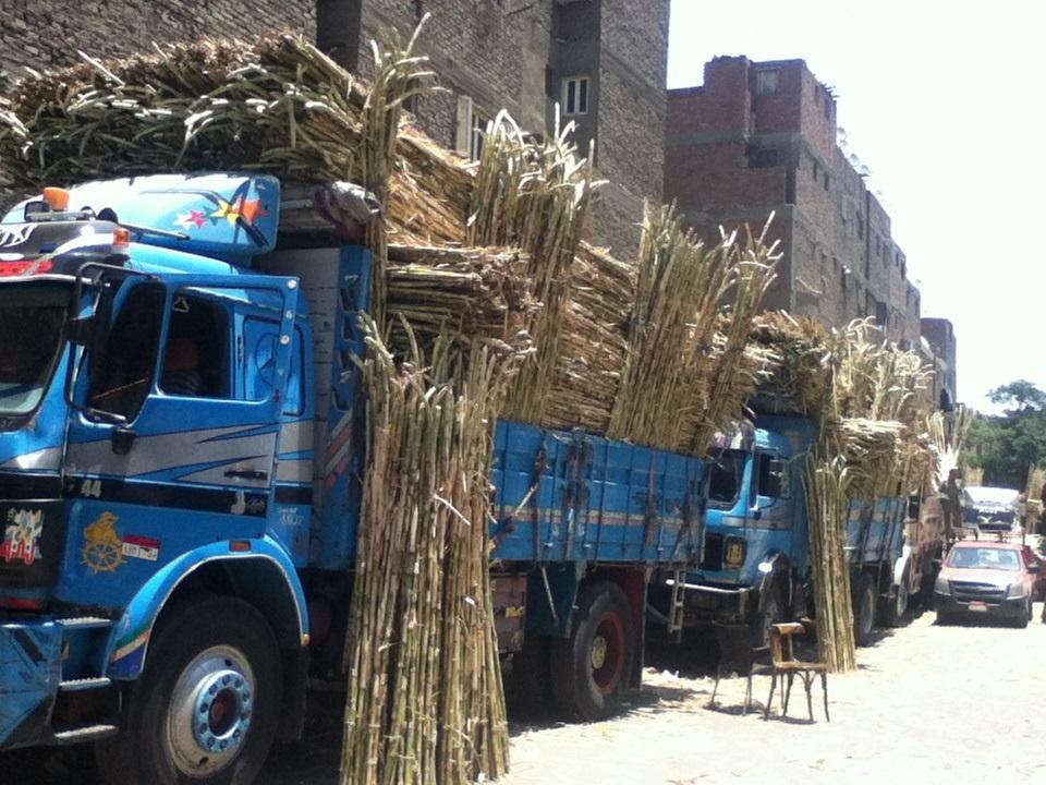 Asab-market-in-matareya